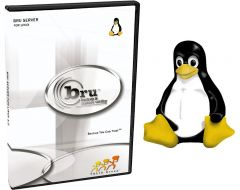 BRU Server 2.x Linux x86, x86_64, ia64 Enterprise Edition 200 clients UPGRADE FROM BRU DESKTOP