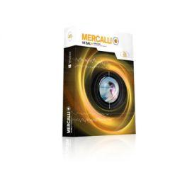 ProDAD Mercalli V4 SAL+   ESD