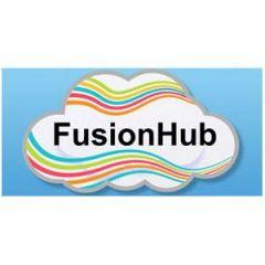 Peplink FHB-PRO SpeedFusion for VM - 20 peer/50Mbps